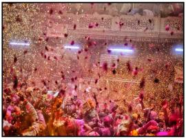 Holi with Flower Petals